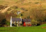 Welsh Farm