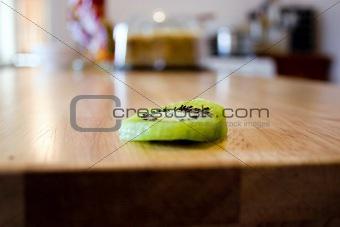 Sliced Kiwi on the Kitchen Table