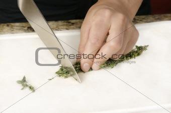 Cutting Thyme