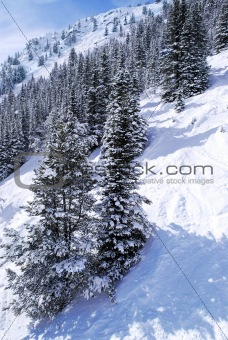 Ski tracks in mountains