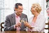 Mature couple toasting.