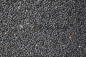 a surface made of black Beluga lentils