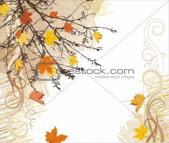 autumn vector bacground / corner