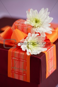 Present box with flowers