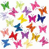 Striped colored butterflies