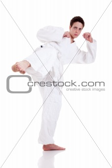 kick ok martial art, isolated on a white background: - sports exercise