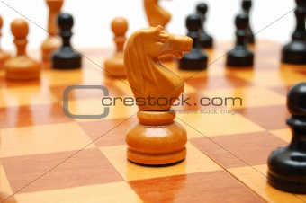 Knight chessman on chess board