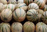 Cantaloupe rock melon muskmelon spanspek