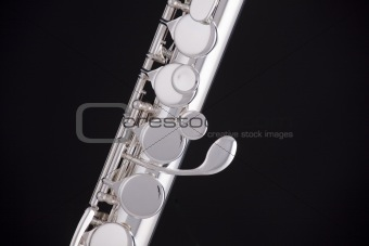 Alto Flute Isolated On Black