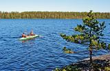 Rocky coast of lake with a pine