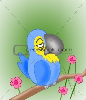 Grumpy Parrot
