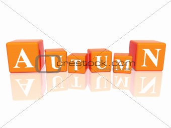 autumn in 3d cubes