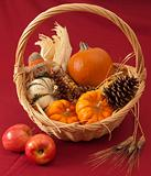 Basket of pumpkins, corn, and cone with apples