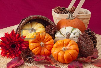 Autumn still life with pumpkins, cones, and leaves