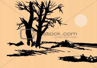 old tree on background sun