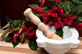 Hot chilli and mortar