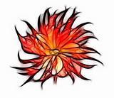 Fractal red dahlia flower