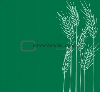 cones of wheat