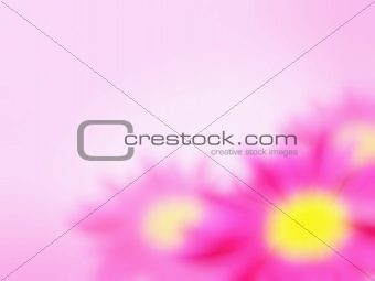 abstract flowers pink background