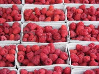boxed Raspberries
