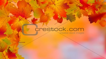Abstract colorful autumn background