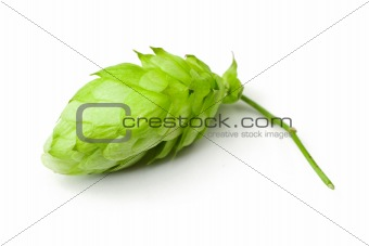 One hop cone
