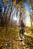 Woman mountain biking down sunny autumn trail