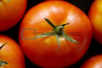 Bright red tomato
