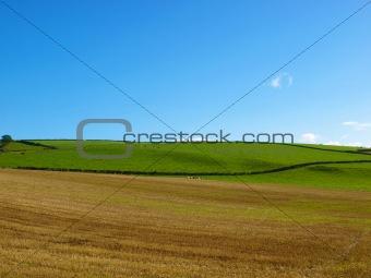 Cardross hill
