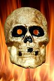 Scary skull with fire background