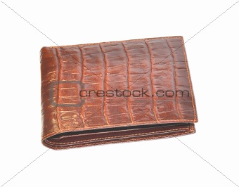 Brown man purse isolated on white