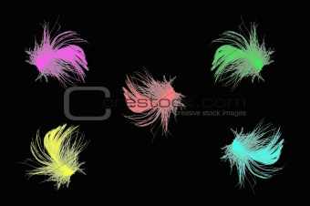 bright multicolor feathers on black background