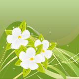 Abstract green background with magnolias