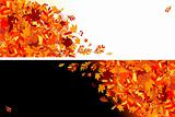 Autumn leaves banners for your design