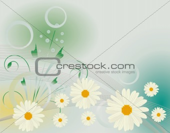 Abstract background with white daisies