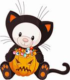 Teddy Bear dressed as Halloween Cat
