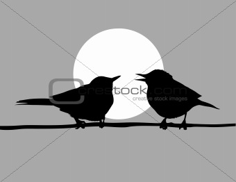 vector drawing two birds  on solar background