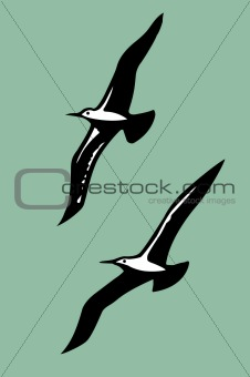 vector silhouettes of the sea birds