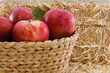 Four delicious red apples in a basket with rustic straw