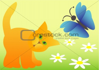 cat, butterfly and white flowers