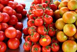 Tomatoes stacked in market different species