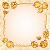 Apricot frame