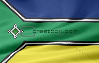 Flag of Amapa - Brazil