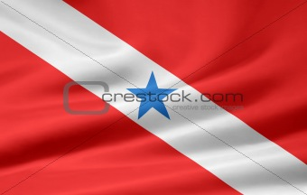 Flag of Rio Grande do Sul - Brazil