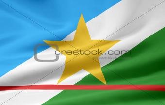 Flag of Roraima - Brazil