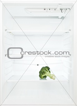 On boquet of Broccoli in the Refrigerator