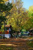 Autumn in village