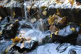 Streamlet's small waterfall