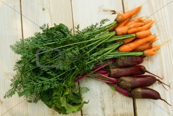 carrot and beets