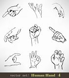 Vector set: Human Hand 4